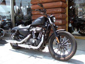 2013 XL883N Iron