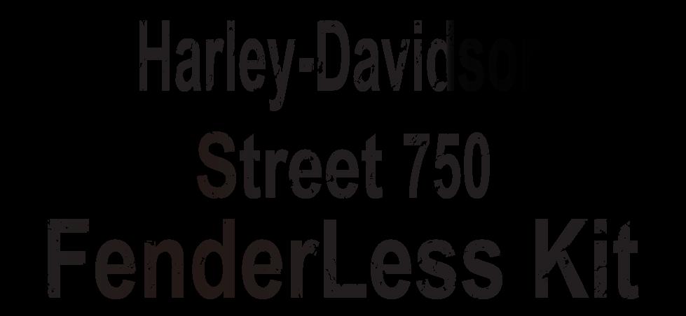 ハーレーダビッドソン ストリート750 フェンダーレスキット