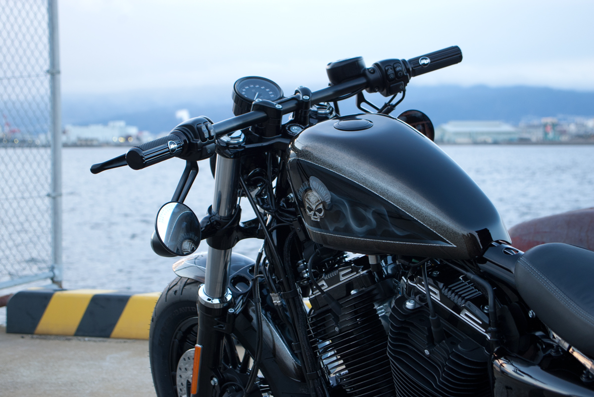 Harley-Davidson customized forty eight legacy SE