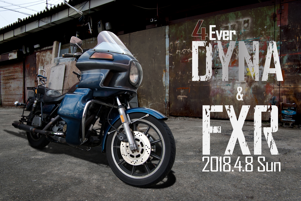 Harley-Davidson FXR and DYNA touring