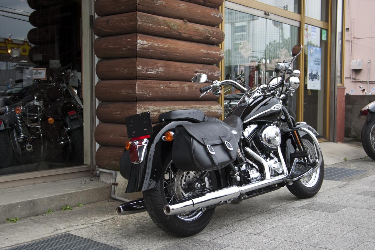 2005年 Harley davidson FLSTSC Springer Softail Classic